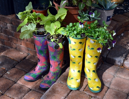 2013-1-24 Garden Boot Containers