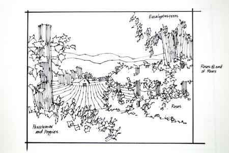 Gallery 1870 sketch 2 Vineyards