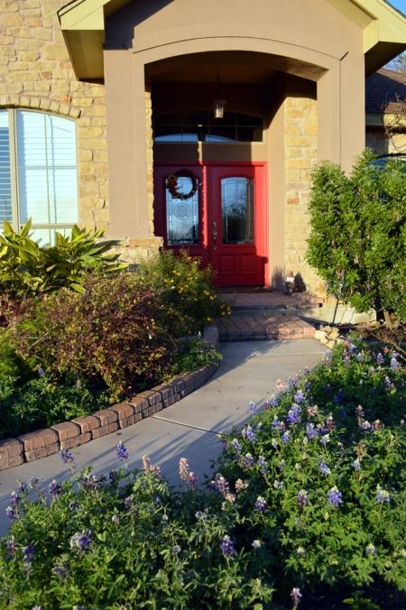 2013-3-12 bluebonnets and front door