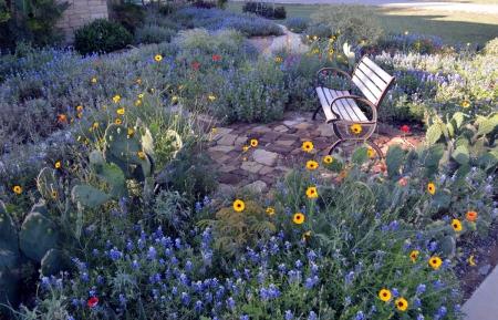 2013-4-22 driveway garden 2