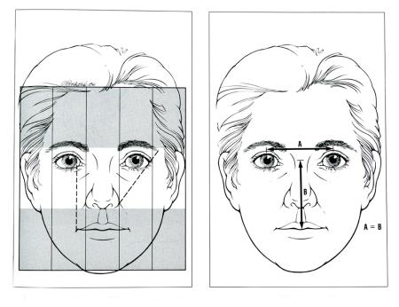 Facial Proportions 1