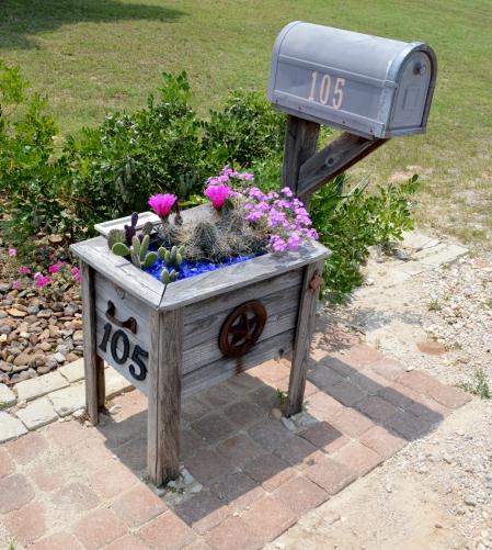 2013-6-1 Mailbox garden 2
