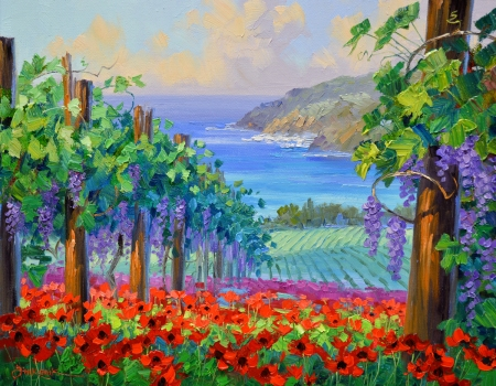 SF3213 Sunwashed Vineyards 16x19