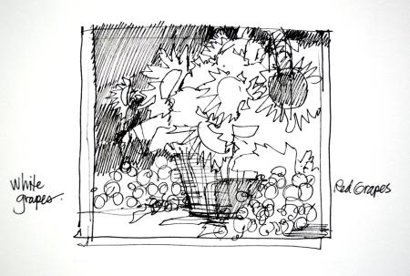 eb SG4413 Bountiful Harvest sketch