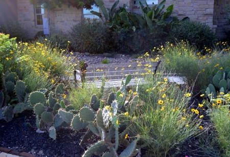 2013-8-14 Driveway garden 2