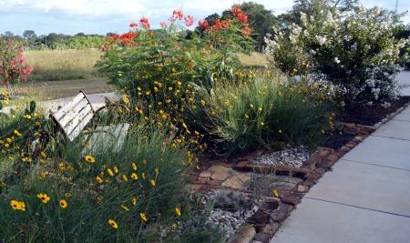 2013-8-14 Driveway garden 3