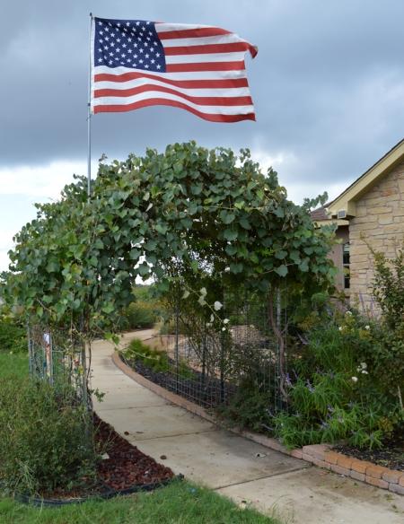 2013-9-11 Flag 3
