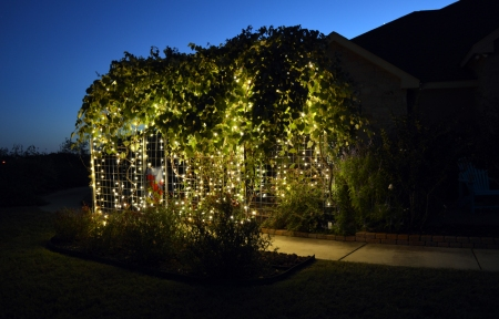 2013-9-23 Grape Arbor at night 6