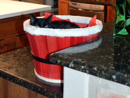 2013-12-27 Sissie in Santa Basket 2