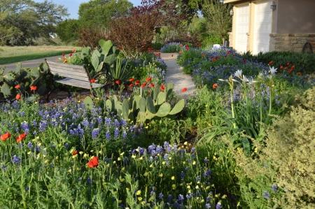 2014-4-4 Driveway garden 2