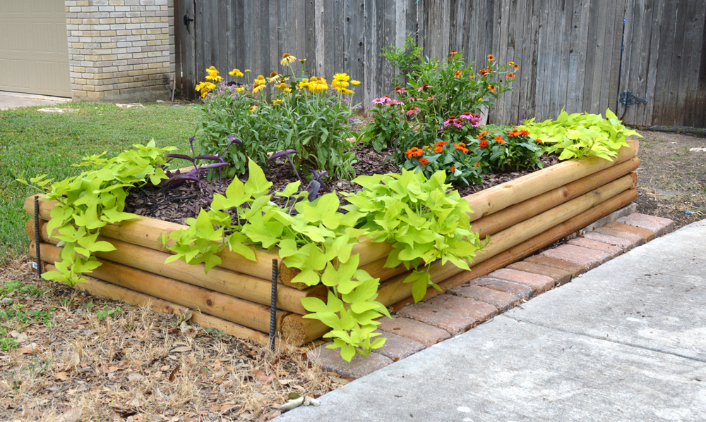 Generous Plants For Narrow Beds Ideas Landscaping Ideas