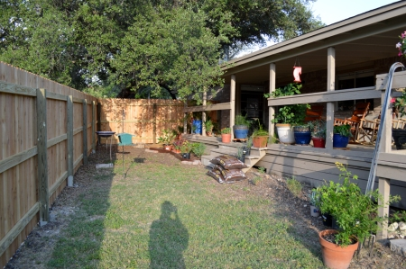 2014-7-4 Back Courtyard area 1