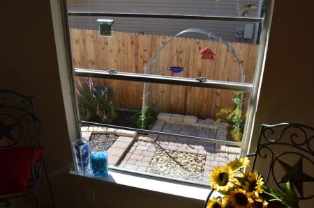2014-10-14 Kitchen garden from window 1