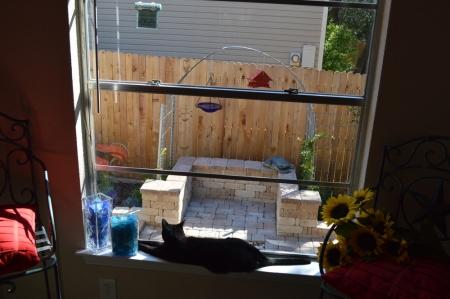 2014-10-21 Kitchen Garden from window with Sissie 1