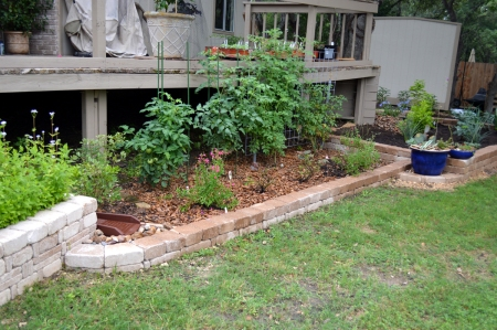 2015-5-11 Tomatoe Bed