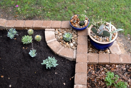 2015-5-9 New Planter -  cactus pots from deck