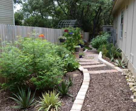 2015-6-27 Kitchen Garden from Gate