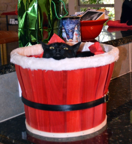 2013-12-27 Sissie in Santa Basket 3 flipped