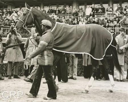 Secretariat and Eddie Sweat 4