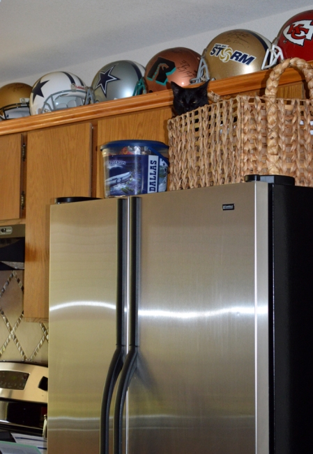 2016-9-27-sissie-on-refrigerator