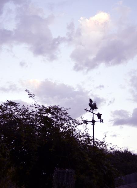 2016-10-24-sun-on-morning-cloud
